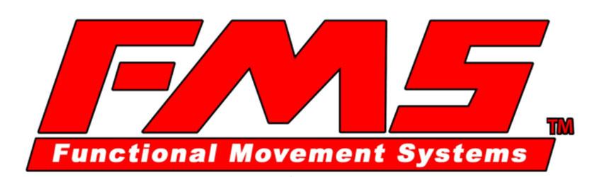 Funkcinių judėjimo sistemų testas FMS